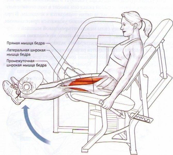 """Описание упражнения """"сгибание ног лёжа"""": особенномти, рекомендации по выполнению, распространённые ошибки"""