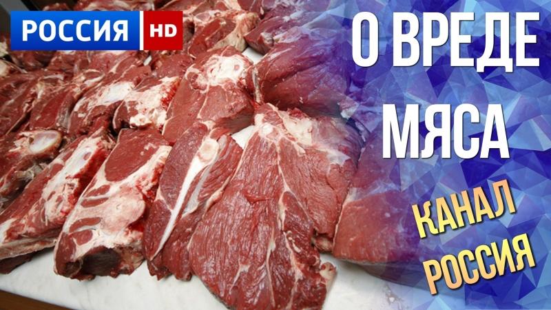 Вредно или полезно мясо? особенности употребления, свойства и рекомендации