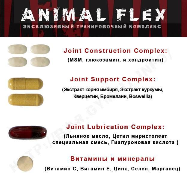 Animal flex для суставов и связок: отзывы и способ применения