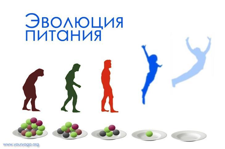 Список пп продуктов на неделю: рацион меню, запрещенные продукты, для похудения