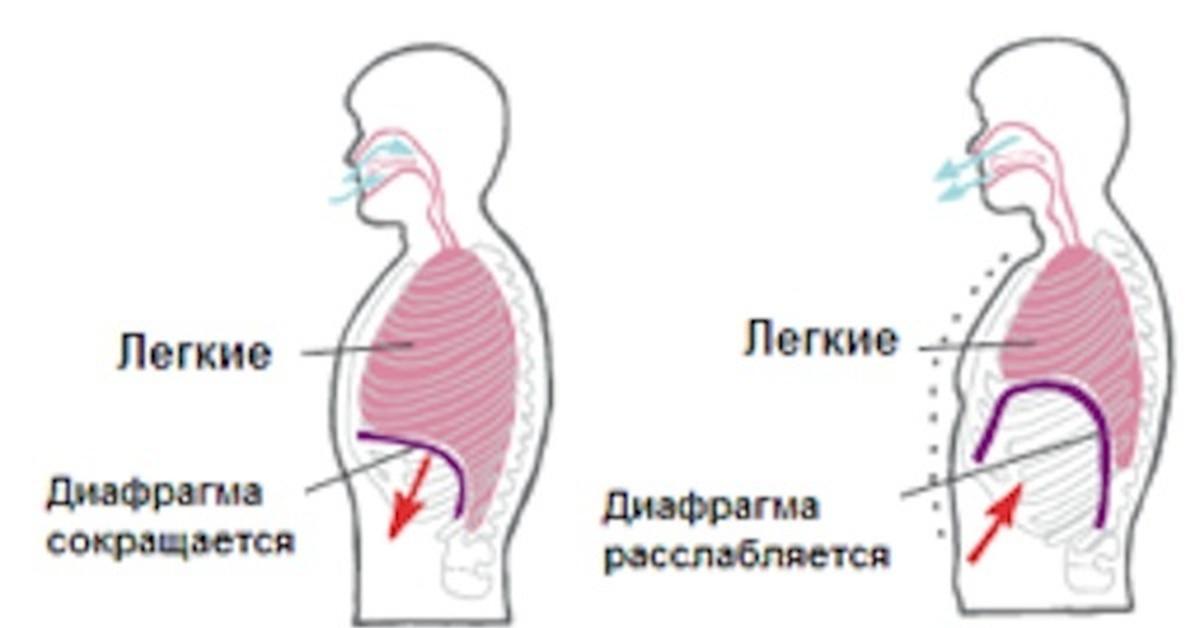 Как правильно дышать при ингаляции небулайзером