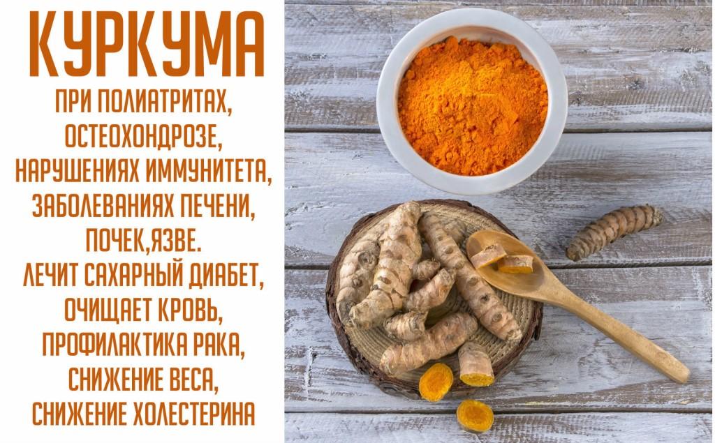 Куркума: польза и вред для здоровья