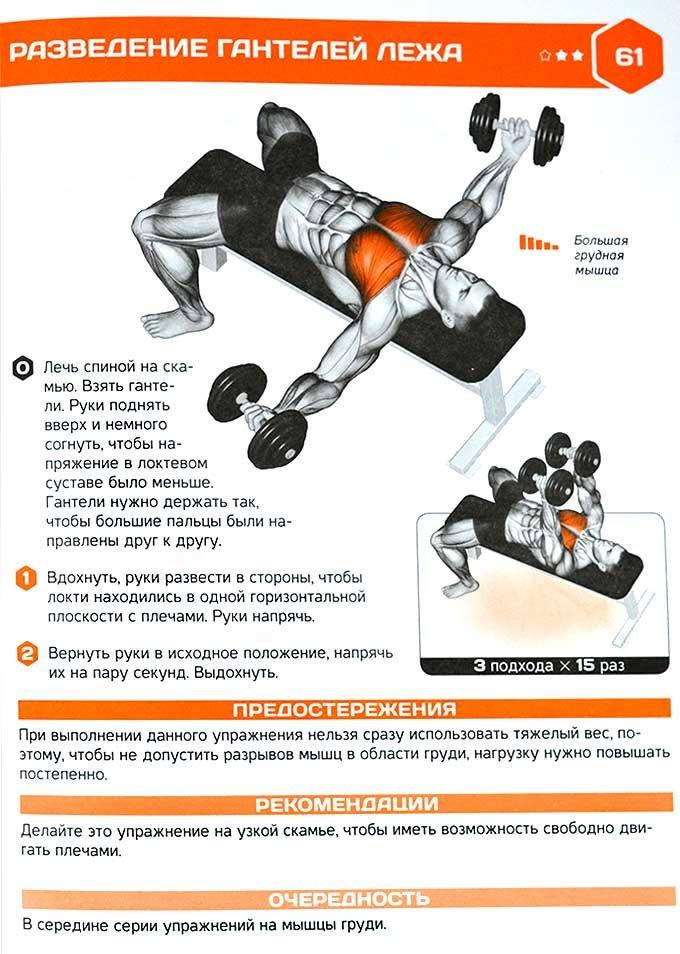 Разведение гантелей лежа на наклонной скамье | бомба тело