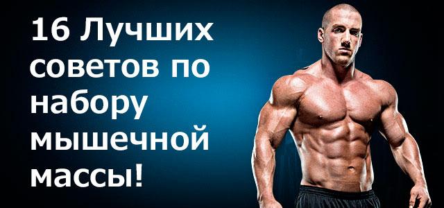 Как растут мышцы?