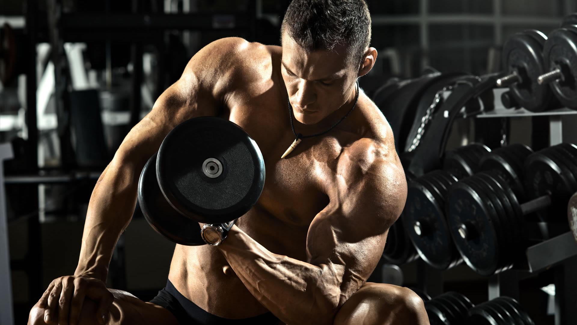 Как определить рабочий вес: для начинающих спортсменов - trainingbody