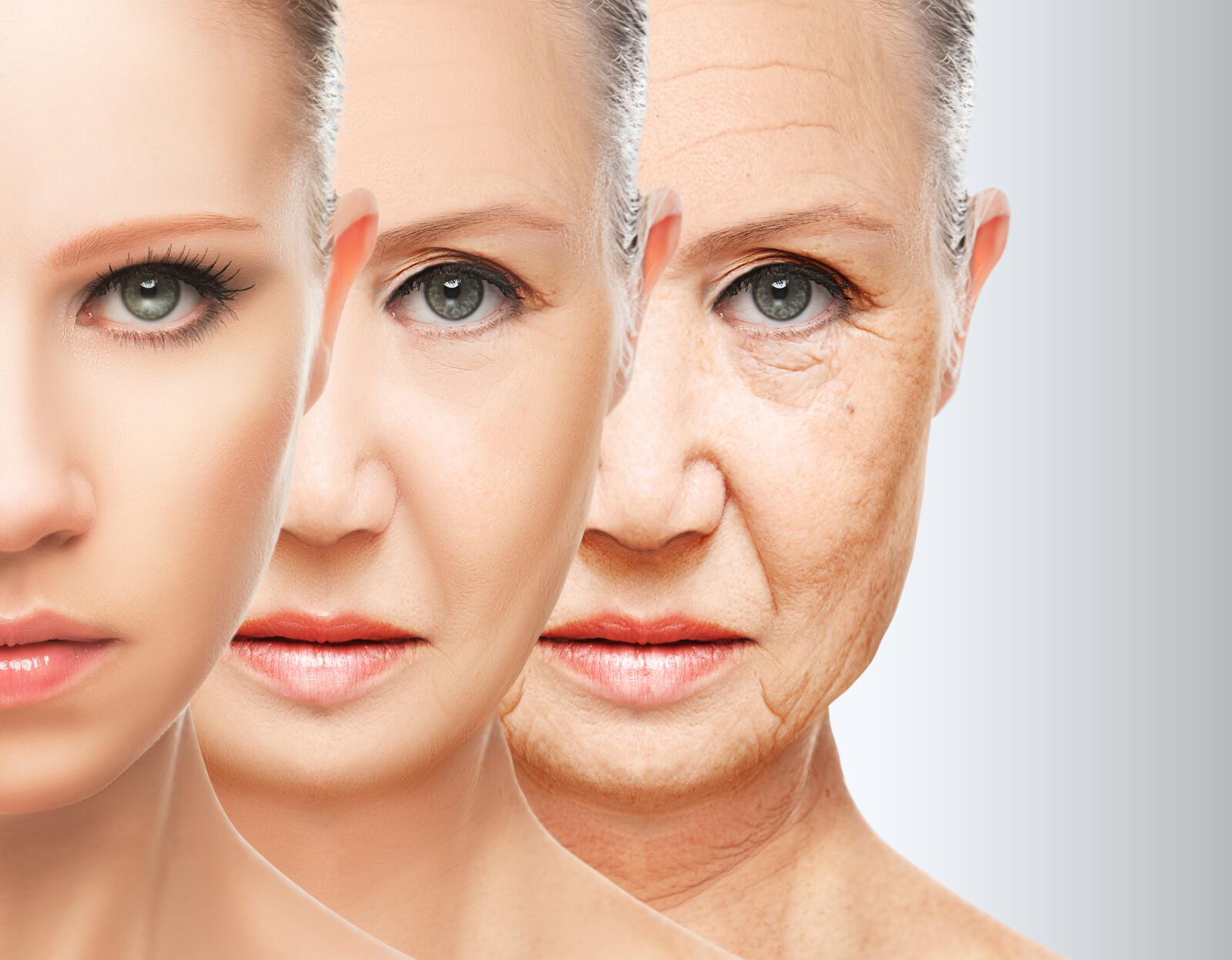 Прогерия — это не ускоренное старение, а, вероятно, болезнь, похожая на старение. если, что-то продлевает жизнь прогерийным мышам, то это может не влиять на старение обычных долгоживущих мышей