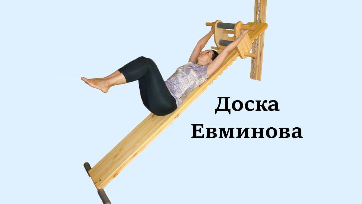 Профилактор евминова -тренажер для лечения болей в спине — hondro.ru