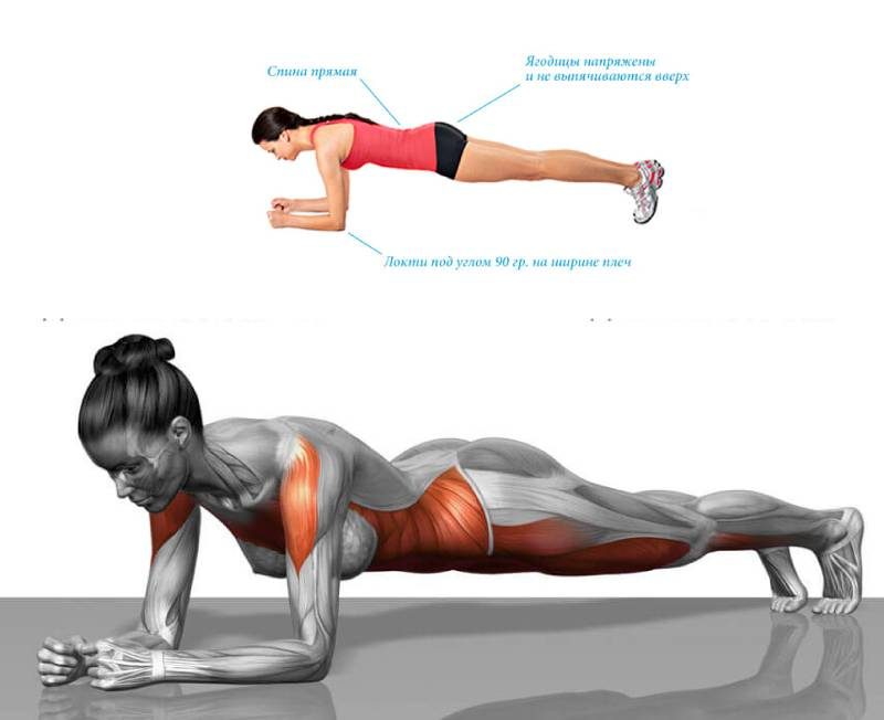 Планка для похудения: польза и вред, разновидности, таблица для начинающих на 30 дней