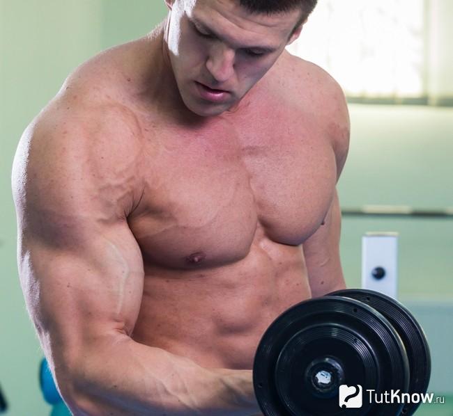Соматотропин: почему его называют гормоном роста, для чего он нужен