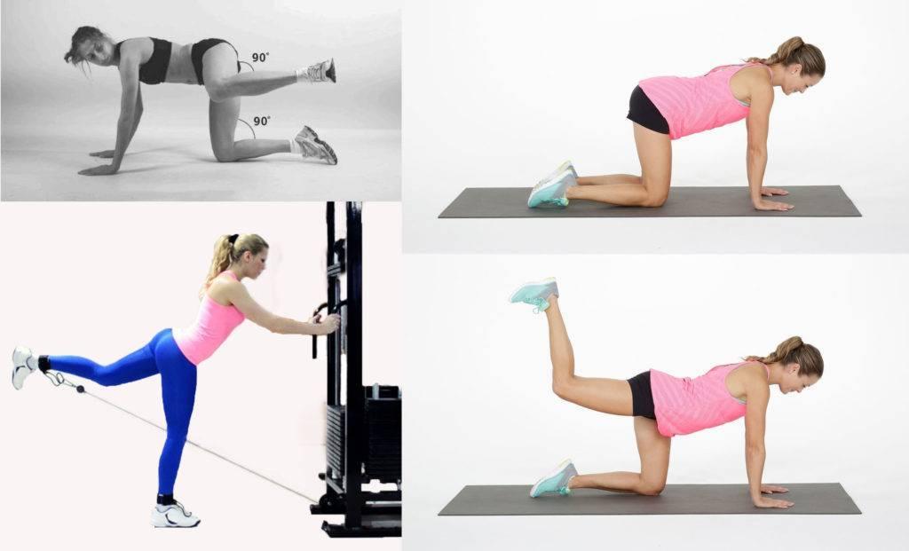 Упражнения для тренировки на ноги и ягодицы, которые необходимо выполнять в тренажерном зале девушкам | rulebody.ru — правила тела