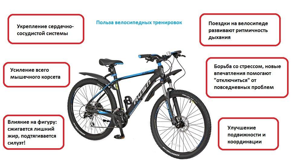 Советы по выбору велосипеда