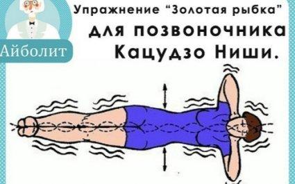 """Упражнение """"золотая рыбка"""" по системе ниши (видео)"""