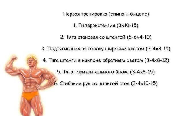Как тренироваться натуралу, базовые принципы тренировок