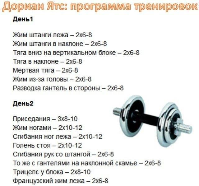 Программа тренировок для мезоморфа для набора мышечной массы