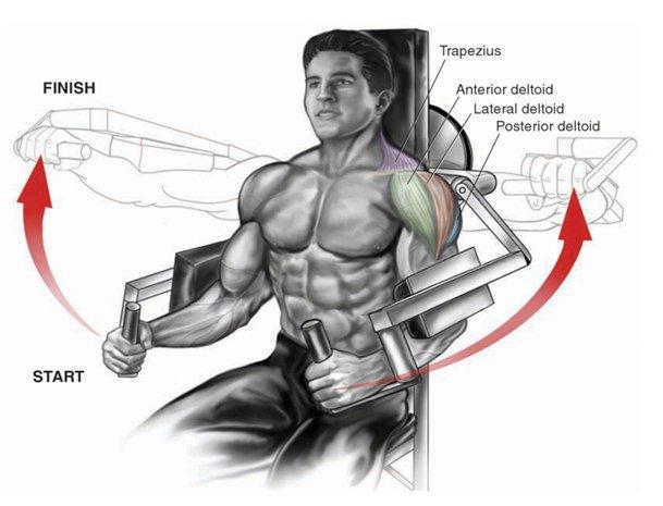 Эффективные упражнения для прокачки дельт