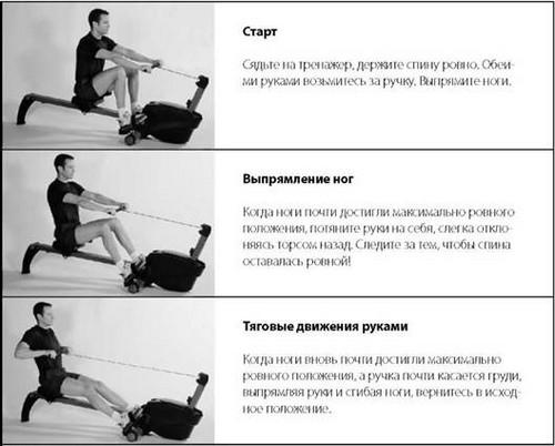 Тренировки на гребном тренажере: как похудеть и сделать тело рельефным.