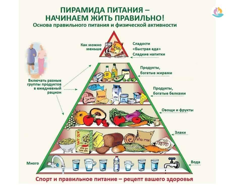 Суточный рацион питания человека: таблица, состав, правильный расчет, структура и основы правильного питания
