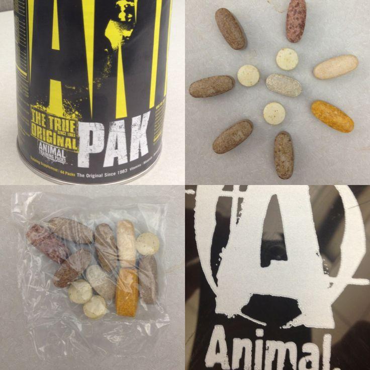 Animal pak: витаминно-минеральный комплекс без побочных эффектов