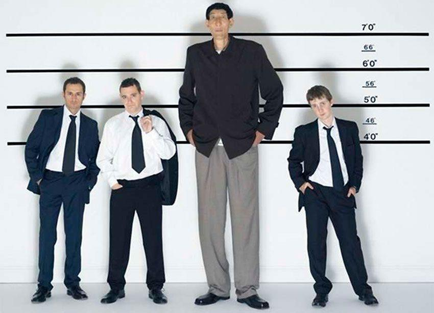 Эффективные упражнения для увеличения роста тела в высоту | rulebody.ru — правила тела