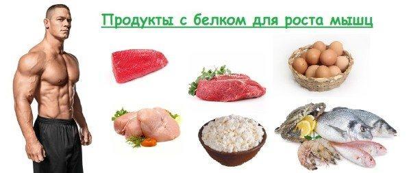 Что такое высокобелковая диета, общие правила и меню с повышенным содержанием белка