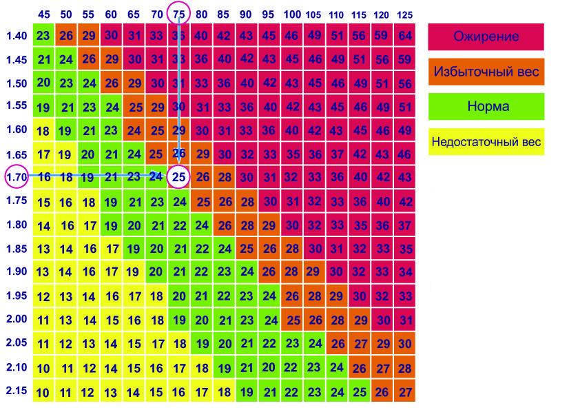 Калькулятор ИМТ (индекс массы тела): рассчитать для мужчин и женщин