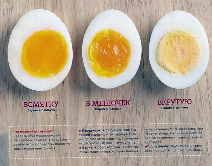 Как правильно сварить яйца :: инфониак