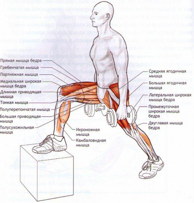 «стульчик у стены» – упражнение для похудения, укрепления мышц ног и ягодиц