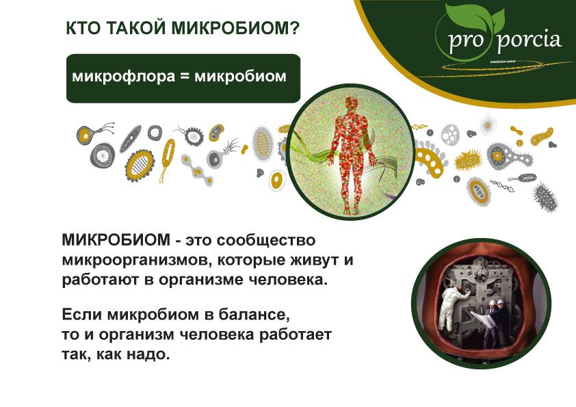 Заговор микробиома: как микробы заставляют нас есть? - hiitworks