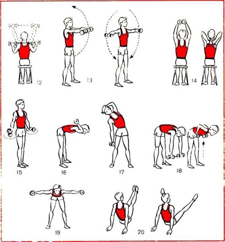 Топ-20 упражнений для рук в домашних условиях для женщин: фото + план занятий