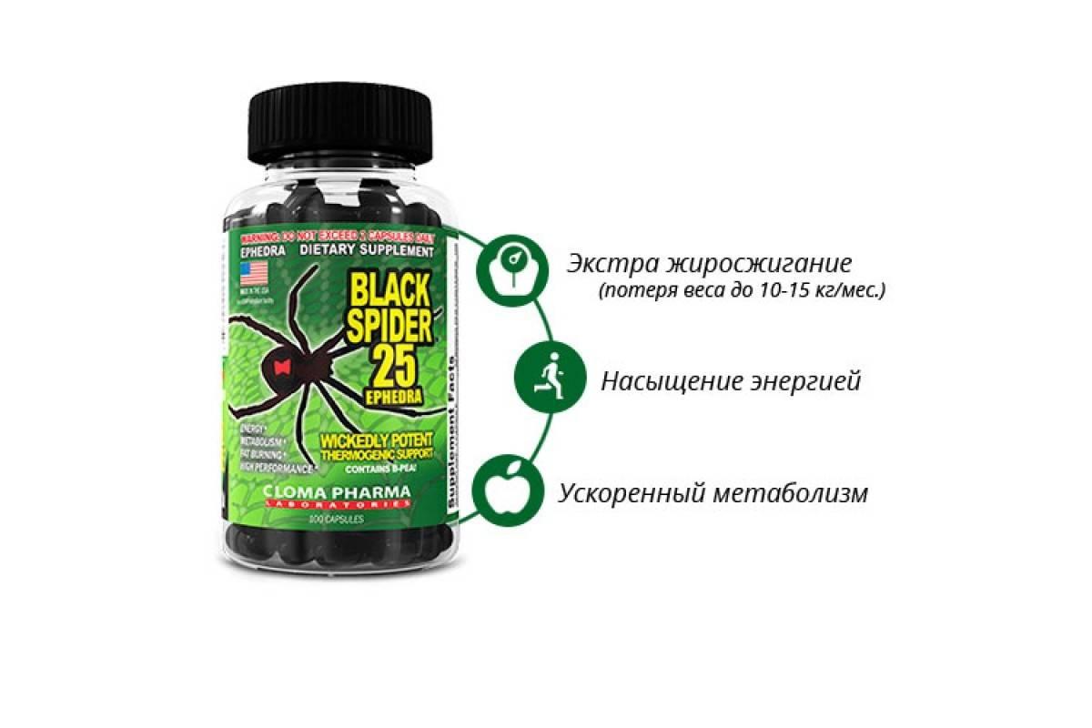 Отзывы о жиросжигателе black spider
