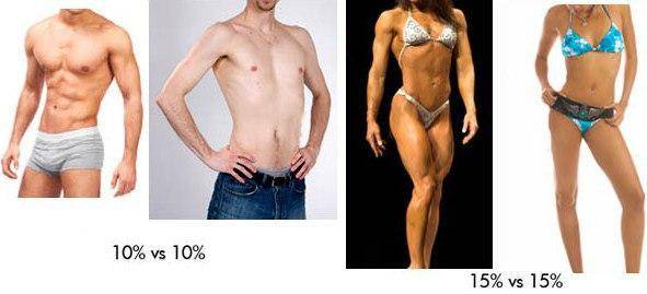 Определяем процент жира в организме. лучшие способы | бомба тело