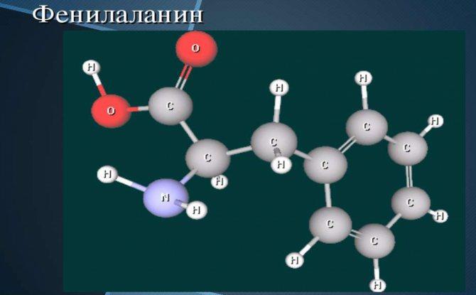 Аминокислота лейцин – свойства и в каких продуктах содержится
