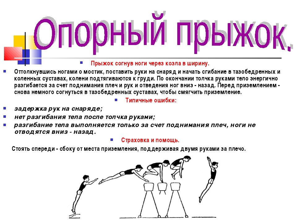 Гимнастический конь. виды и конструкция. упражнения