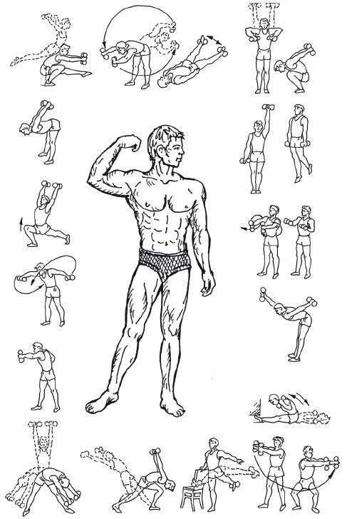 Гимнастические упражнения - эффективные методы похудения и правила растяжки (110 фото + видео)