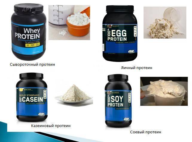 Нужно ли пить протеин после тренировки