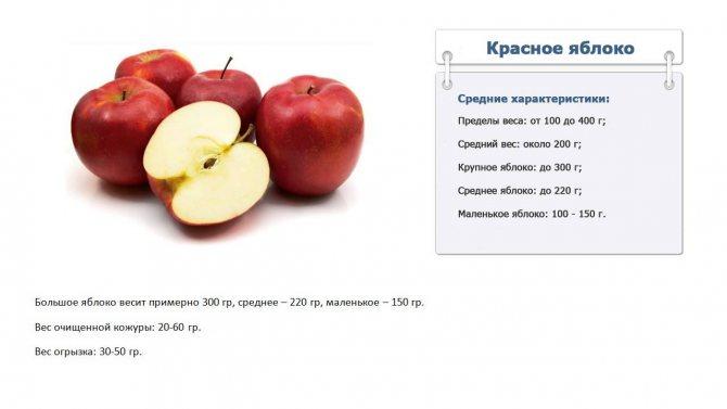 Сколько калорий в яблоке на 100 грамм, бжу в 1шт, энергетическая ценность зеленого, красного, голден, среднего размера