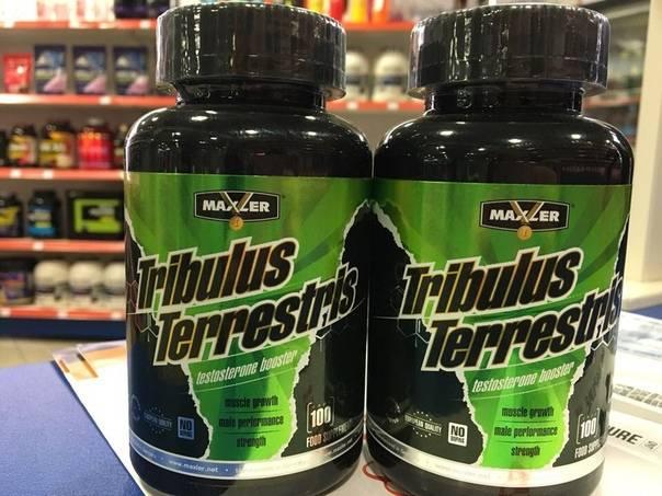 Трибулус террестрис на страже здоровья и мышц