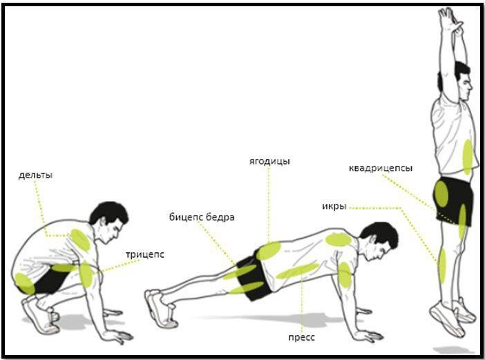 Техника берпи или как сделать тело подтянутым