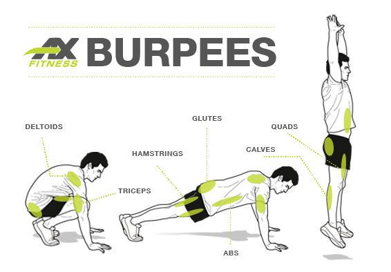 Как правильно делать упражнение «бурпи» (берпи)