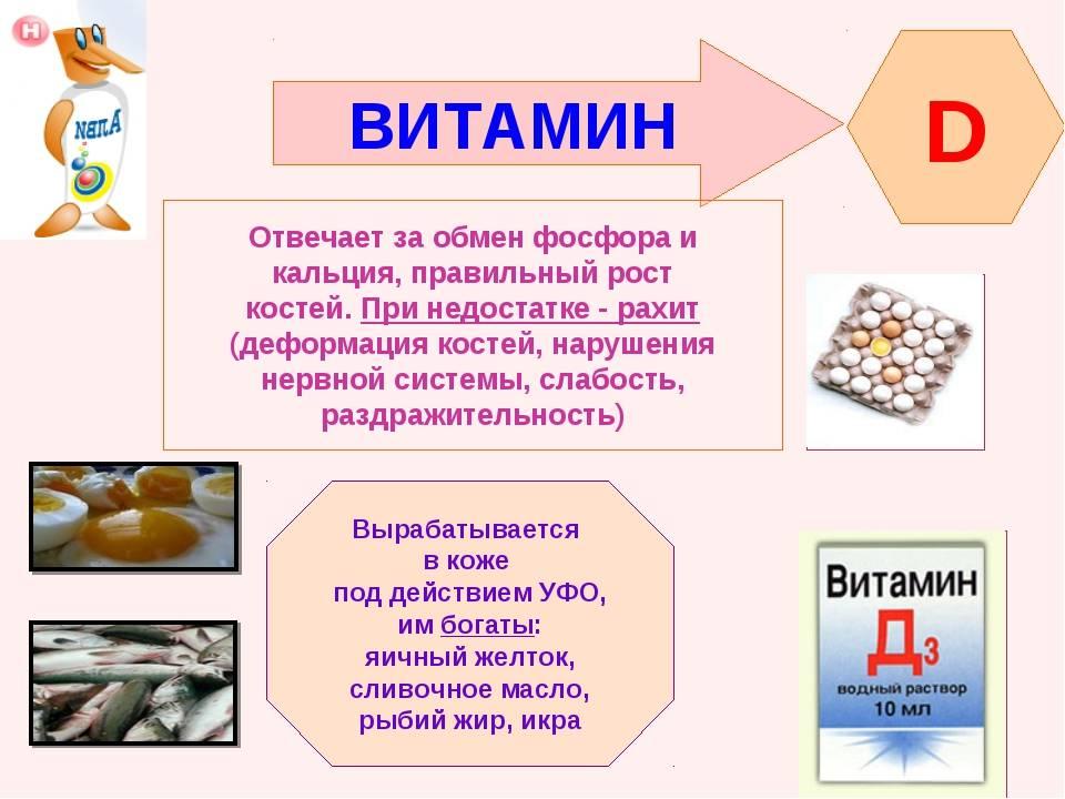 Витамины группы в — описание, функции, источники и применение витаминов b