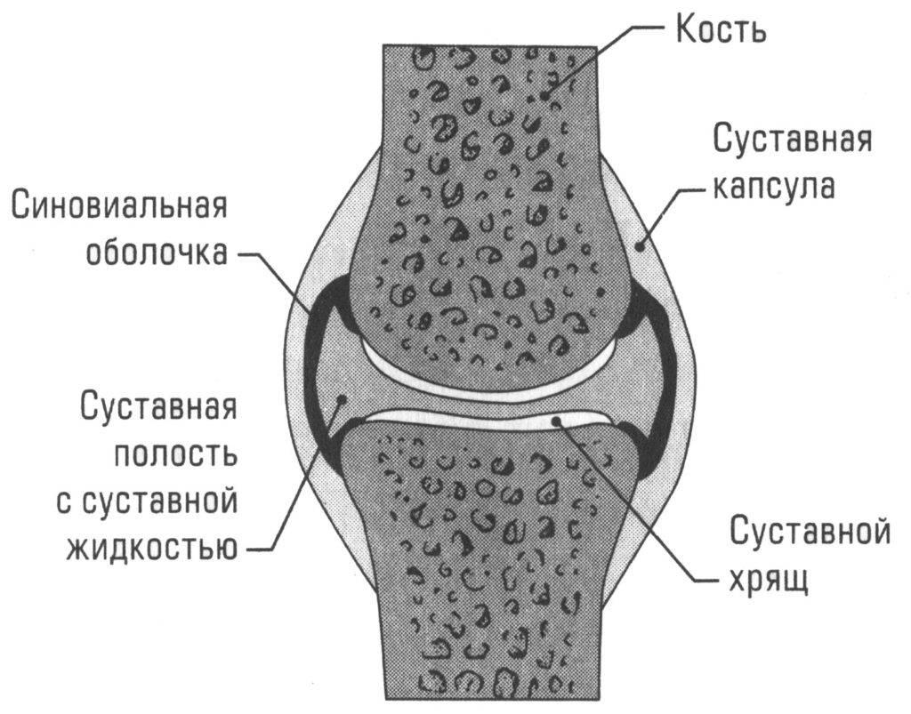 После тренировки болят суставы: причины и лечение. вредные упражнения для суставов