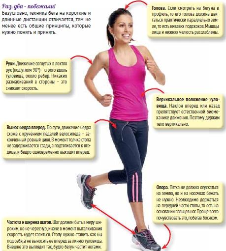 Бег влияет на похудение: основные техники, программа тренировок