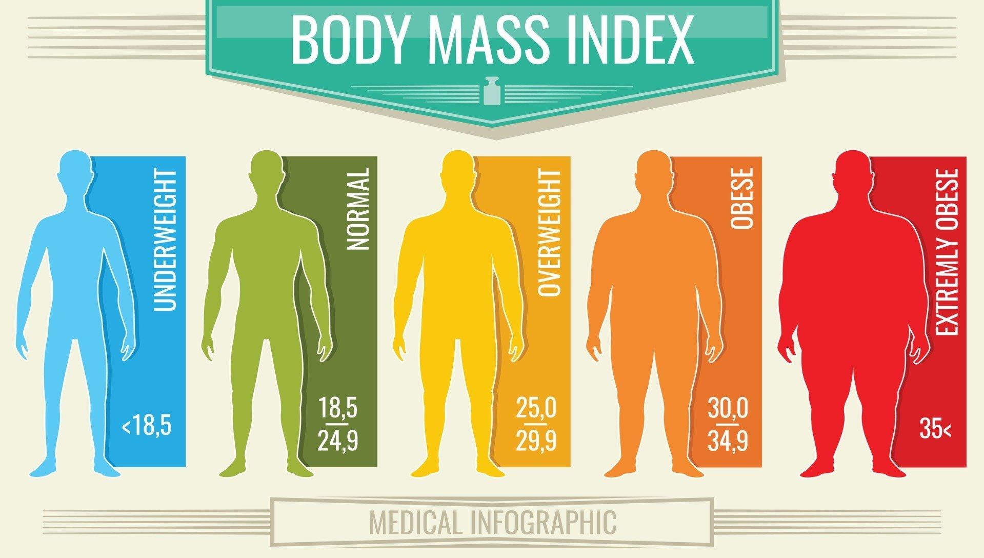Формула индекса массы тела - онлайн расчет имт на калькуляторе