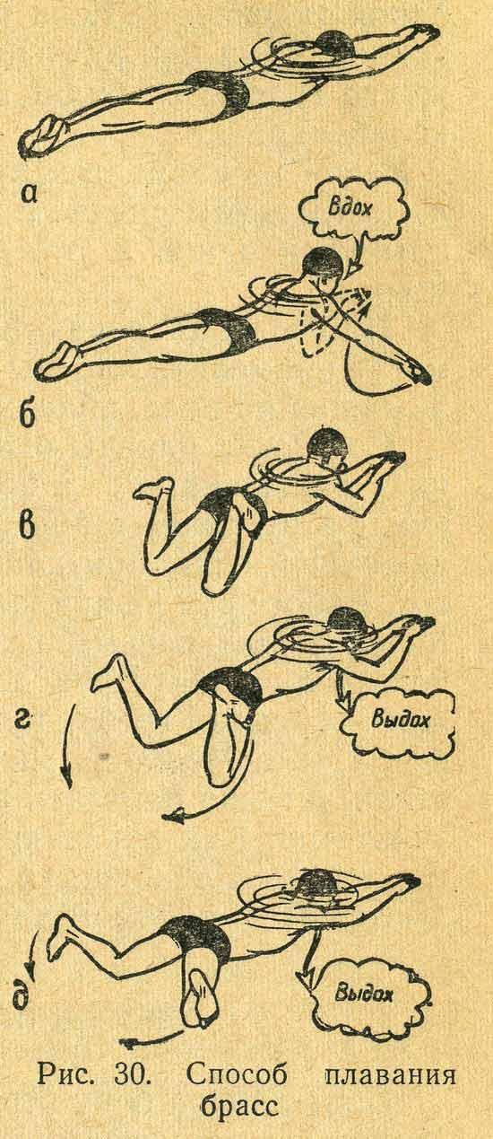 Плавание на спине: описание и виды, как правильно плавать этим стилем для позвоночника, а также нормативы, разряды, дистанция и правила соревнований