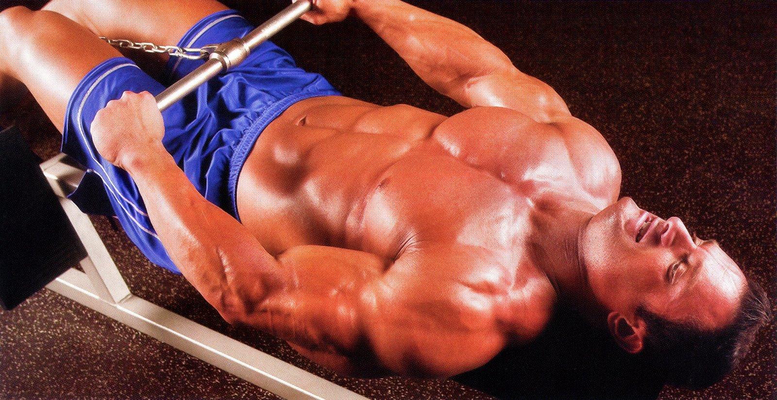 Мышечная память – o sporte