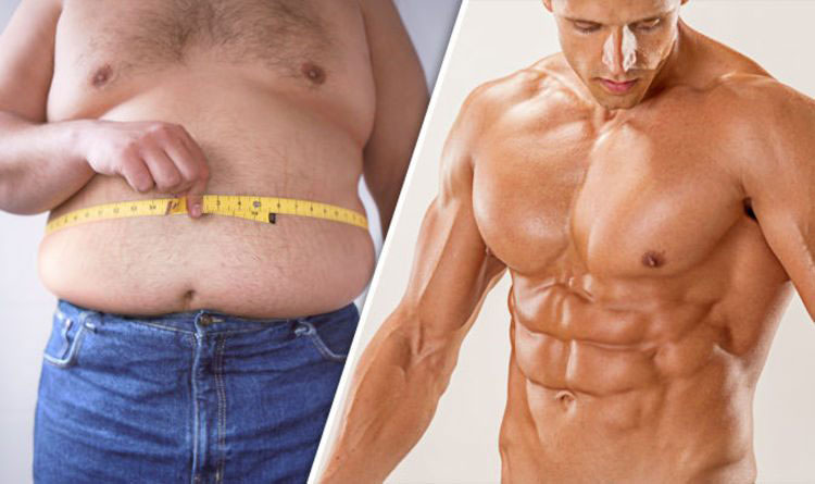 Можно ли превратить жировую массу в мышечную?
