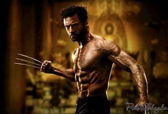 Тренировки хью джекмана —как актер набрал 15 кг мышц?