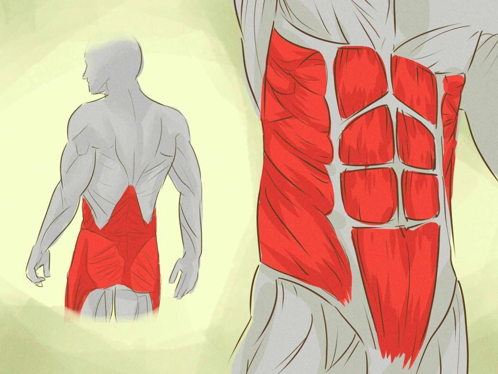 Мышцы стабилизаторы коленного сустава упражнения - здоровьекостей