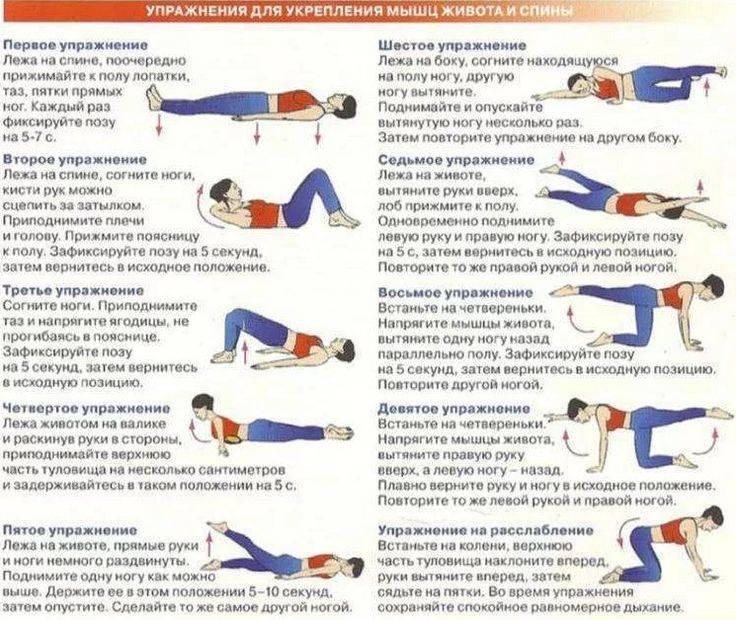 Упражнения для укрепления мышц спины в домашних условиях и зале