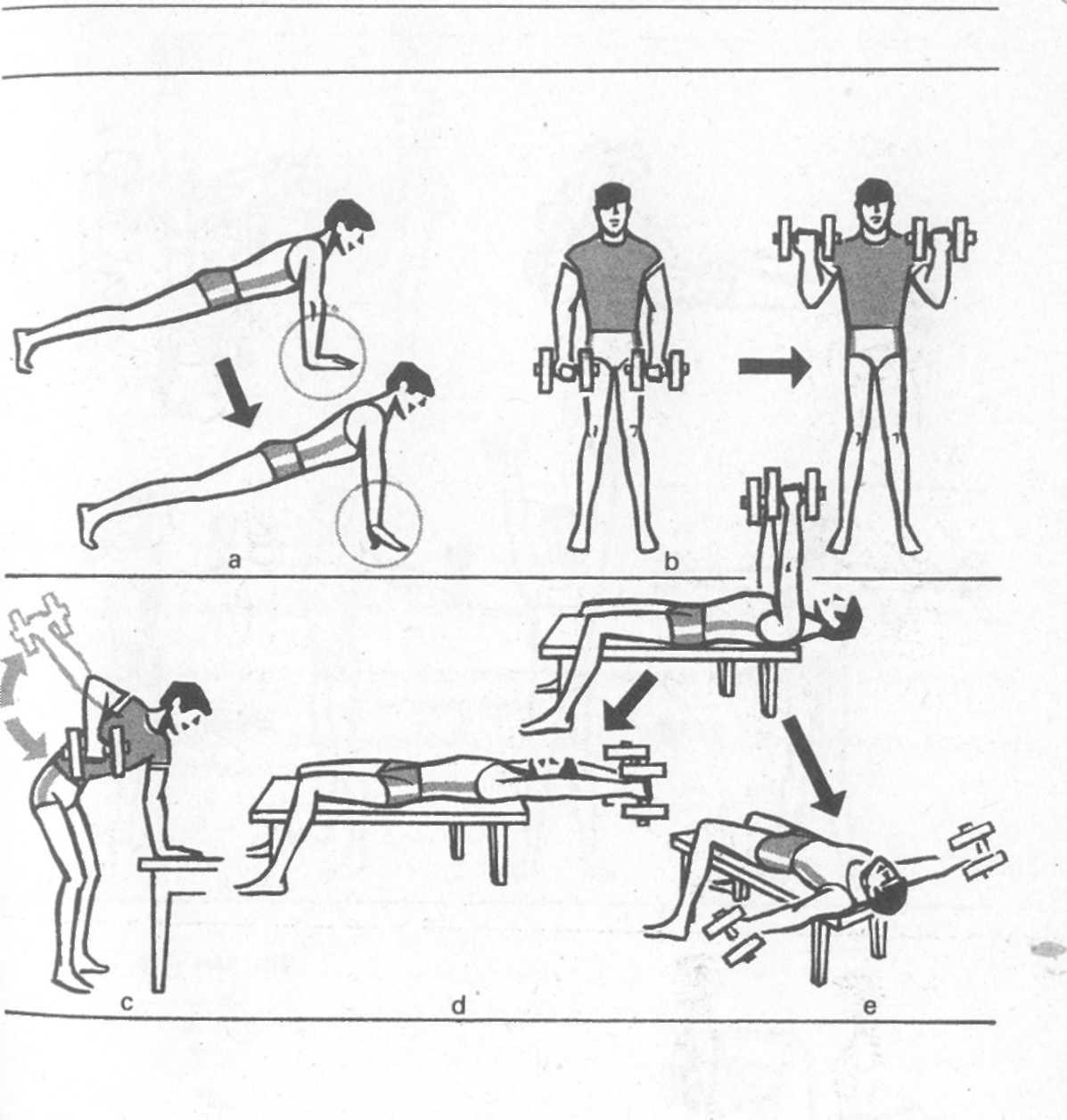 Методы спортивной тренировки: характеристика, задачи и цели